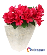 eProduct Photography Flower Arrangements